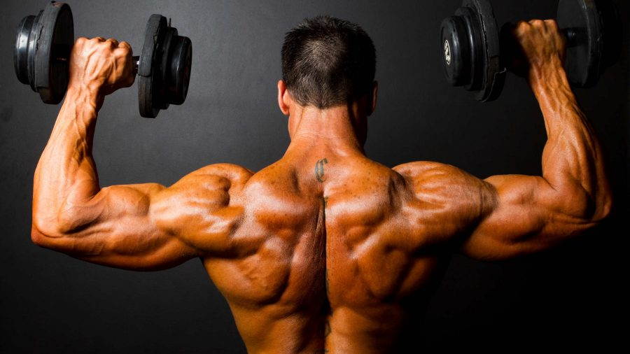 Bodybuilding Man with dumbbells