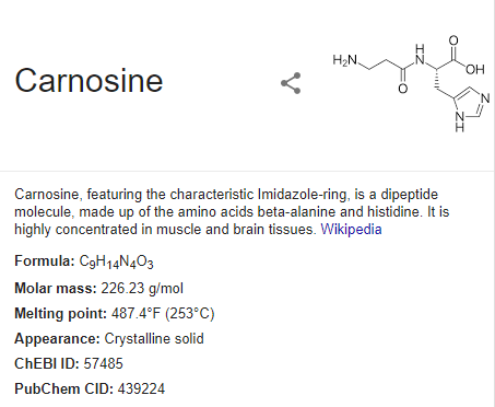 Carnosine definition wikipedia