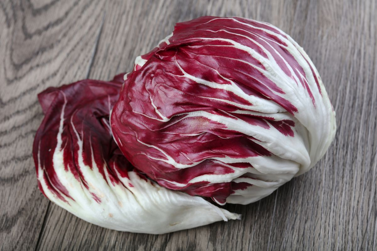 Fresh Radicchio salad