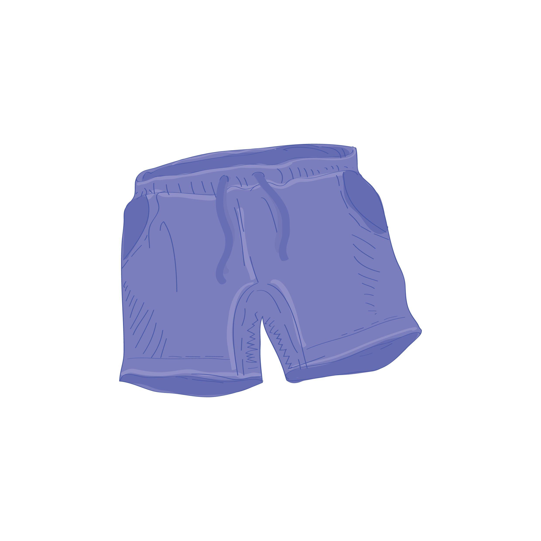 Blue Shorts Vector Image