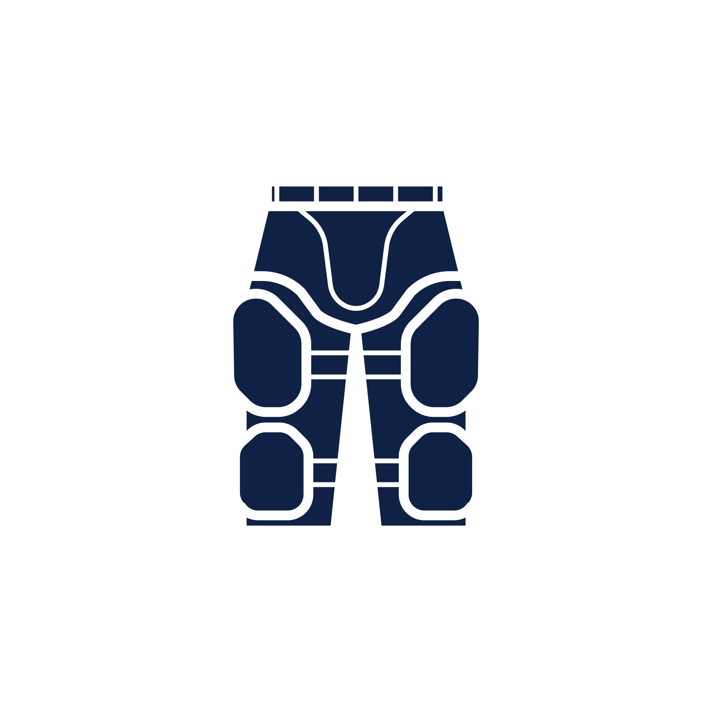 Blue Knee and thigh pads Vector Image
